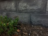 Bluestone  Stone Wall